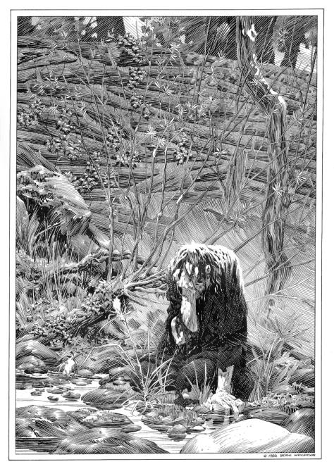 Bernie Wrightson's Frankenstein Portfolio, plate 4