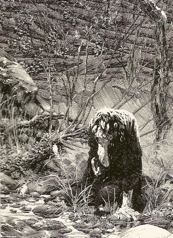 Bernie Wrightson's Frankenstein Trading Cards #21, front
