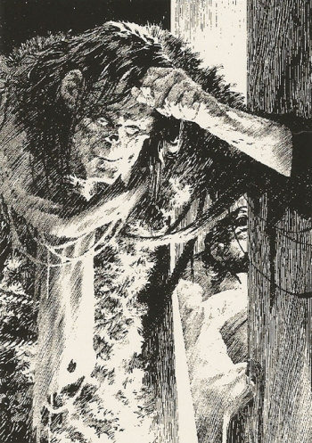 Bernie Wrightson's Frankenstein Trading Cards #F-42, front