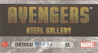 Avengers Steel Gallery Portfolio certificate
