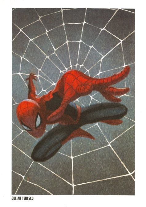 Spider-Man Steel Gallery Portfolio. Artwork by Julian Tedesco.