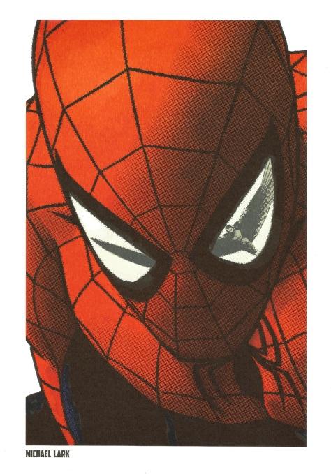 Spider-Man Steel Gallery Portfolio. Artwork by Michael Lark.